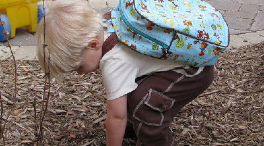 toddler.jpg#asset:101845